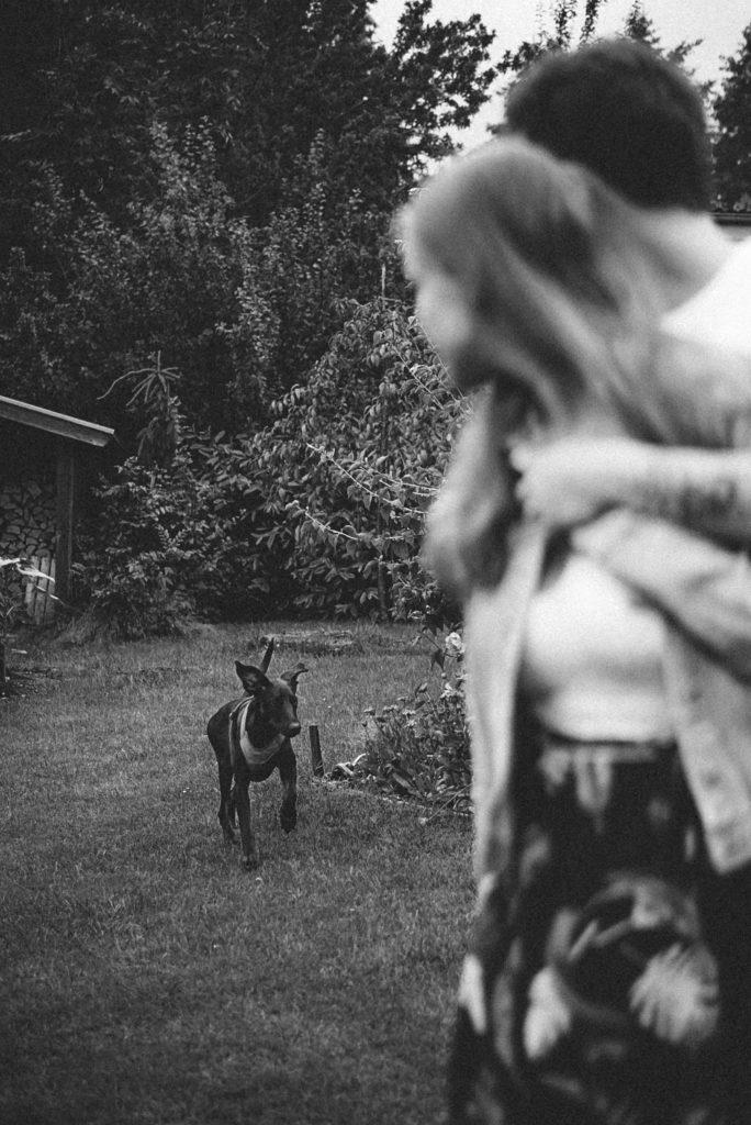 Sophie Peschke, Paar-Fotografie, Liebe, Couple Photoshooting, Verlobungsfotoshooting, Verlobung, Fotoshooting mit Hund, Dobermann, Hochzeit